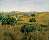 Summer at Shinnecock Hills 1881 by William Merritt Chase Framed Print on Canvas