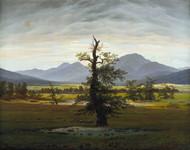 Village Landscape in Morning Light (The Lone Tree) 1822 by Caspar David Friedric Framed Print on Canvas