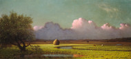 Sunlight and Shadow The Newbury Marshes 1871 by Martin Johnson Heade Framed Print on Canvas