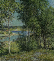 A Family of Birches 1907 by Willard L Metcalf Framed Print on Canvas