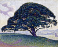 The Bonaventure Pine 1893 by Paul Signac Framed Print on Canvas