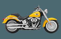 Harley Davidson Softail Fatboy FLSTF Bags