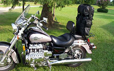 jerry hawk with sissy bar Luggage
