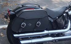 Ted's Harley-Davidson Softail Slim w/ Pinnacle Motorcycle Saddlebags