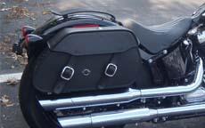 Ted's Harley-Davidson Softail Slim w/ Pinnacle Motorcycle Saddlebags