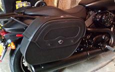 Andyan's Harley-Davidson Street 750 w/ Motorcycle Saddlebags
