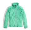 The North Face Girl's Osolita Triclimate Jacket shown here in Graphite Grey (Liner). NF0A34UM