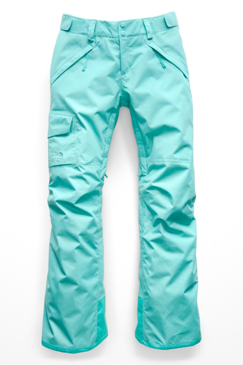 The North Face Freedom Insulated Ski Pant Women S Nf0a3lwb