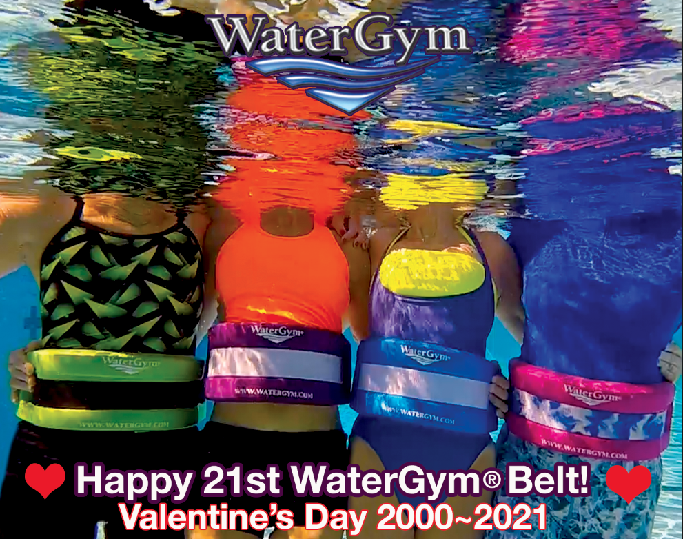 watergym water aerobic float belt in blue purple pink and lime green colors