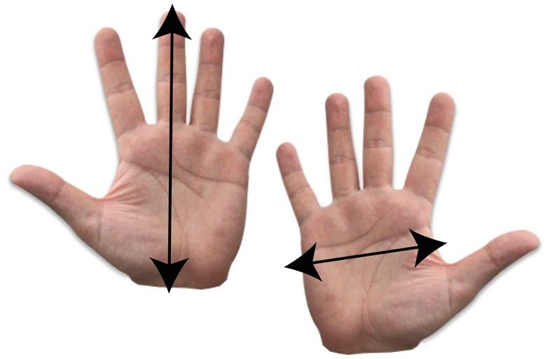 webbed-water-gloves.jpg
