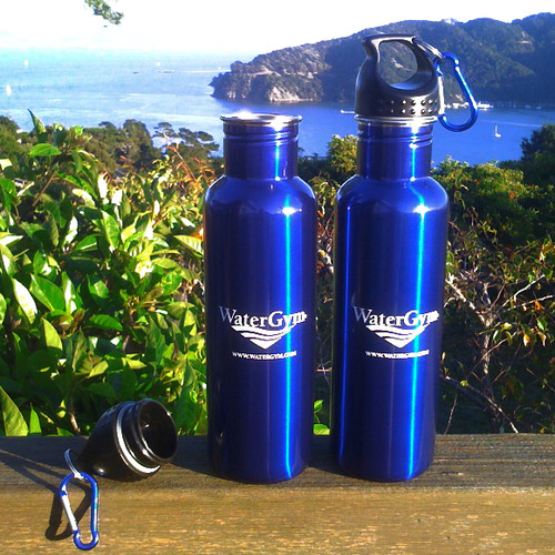 Stainless Steel Water Bottle WaterGym