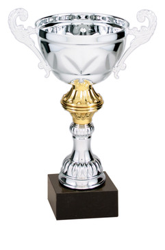 Silver & Gold Trophy Cup