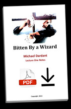 Bitten by a Wizard - Lecture Notes - PDF Download