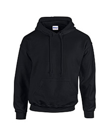 Embroidered Hoodie Pullover_ACA