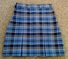 Skirt Plaid 59 (1011)