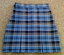 Skirt Plaid 59 (1024)