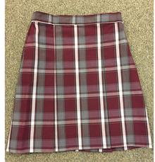 Skirt Plaid 54 (1027)