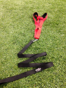 Resistance Harness w/Static Leash