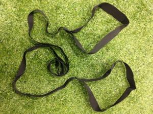 Partner Tow Belt