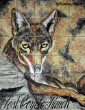 coyote kitchen tile mural