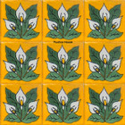 Spanish Mexican Tiles