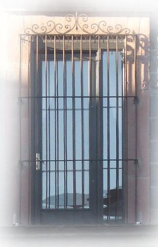 elegant forged iron window guards