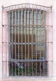 artisan made forged iron window guards