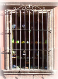 Southwestern forged iron window guards