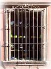 Southwestern forged iron window guards