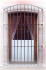 Southeastern forged iron window guards