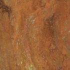 rusted Moorish wrought iron guard grill for window