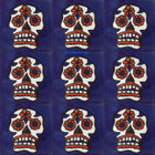 Southern Mexican tiles white terracotta