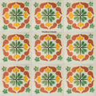 Moorish Mexican tiles terracotta