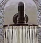 colonial hacienda bronze shower head