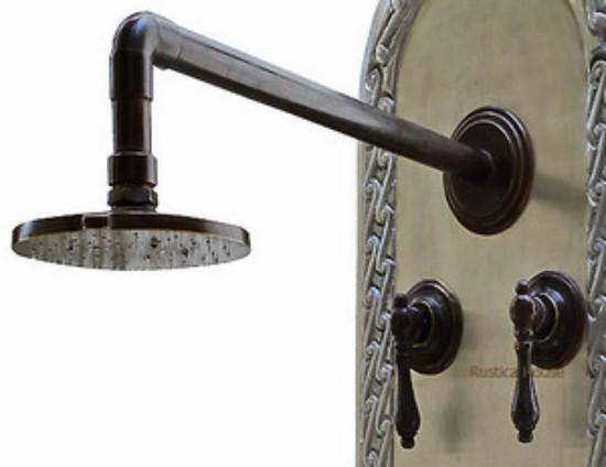 hacienda bronze shower head