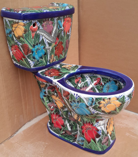 mexican toilet with colibri