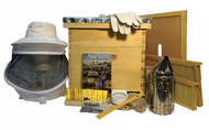 Bee Keeper 10 Frame Starter Kit All You Need To Get Going