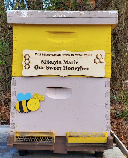 Adopt A Hive Operation Honey Bee