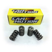 """LS High Performance .700"""" Hydraulic Roller Double Spring Set (VSS141311)"""