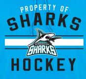 property-of-sharks-thumb-ro.jpg