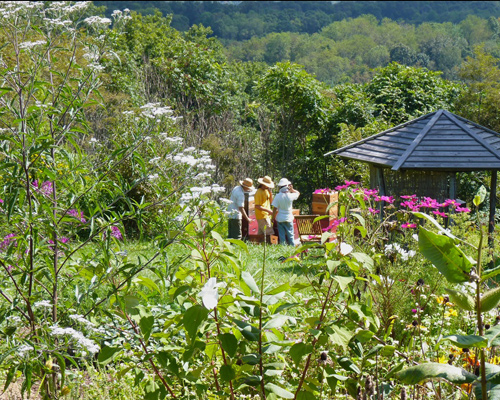 View of Spikenard Honeybee Sanctuary