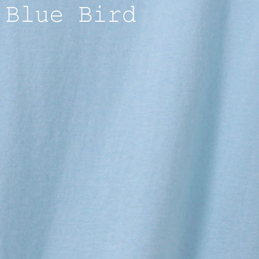 Solid Men's T-Shirt - Blue Bird Small