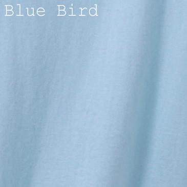 Solid Men's T-Shirt - Blue Bird Small