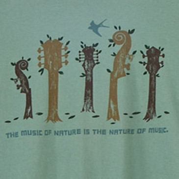 Women's Slim Scoop Organic Ringspun T-Shirts - Nature of Music Sea Green