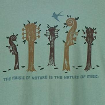 Women's Slim Scoop Organic Ringspun T-Shirts - Nature of Music Sea Green