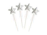 Amelie Star Wand Pack- Silver