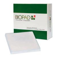 "Biopad Collagen Dressing, 4"" x 4""  SX132644B-Box"