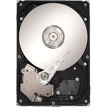 DELL DISCO DURO SEAGATE 1TB @7.2K SATA 3.5 INCHES RPM 32MB CACHE INTERNAL  NEW DELL ST310005N1A1ASR, ST310005N1A1ASRK, ST310005N1A1AS-RK, 9BX1A8571