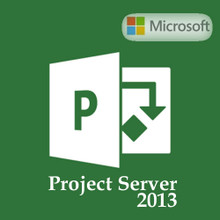 MICROSOFT PROJECT SERVER L 2013  OPEN BUSINESS WIN  SINGLE OPL  H22-02465