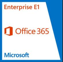 MICROSOFT OFFICE 365 ENTERPRISE E1 OPEN SHRDSVR SNGL SUBSVL OLP NL ANNUAL QLFD Q4Y-00003